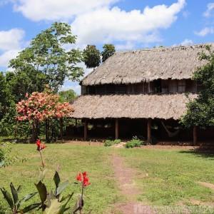 Caiman House Guyana