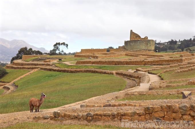 Ruins of Ingapirca, Ecuador
