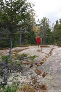 Wonderland trail, Acadia Maine