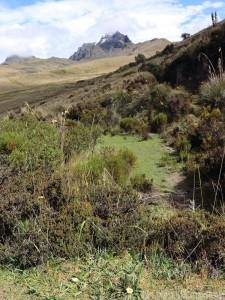 Quito Loma Cruz nature trail