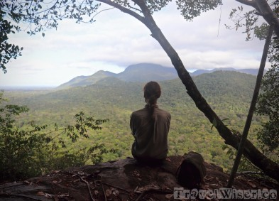 Awarmie Mountain Guyana rainforest