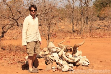 A pile of old bones welcomes you to Machampane