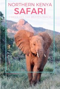 Northern Kenya safari 1 week off the beaten track